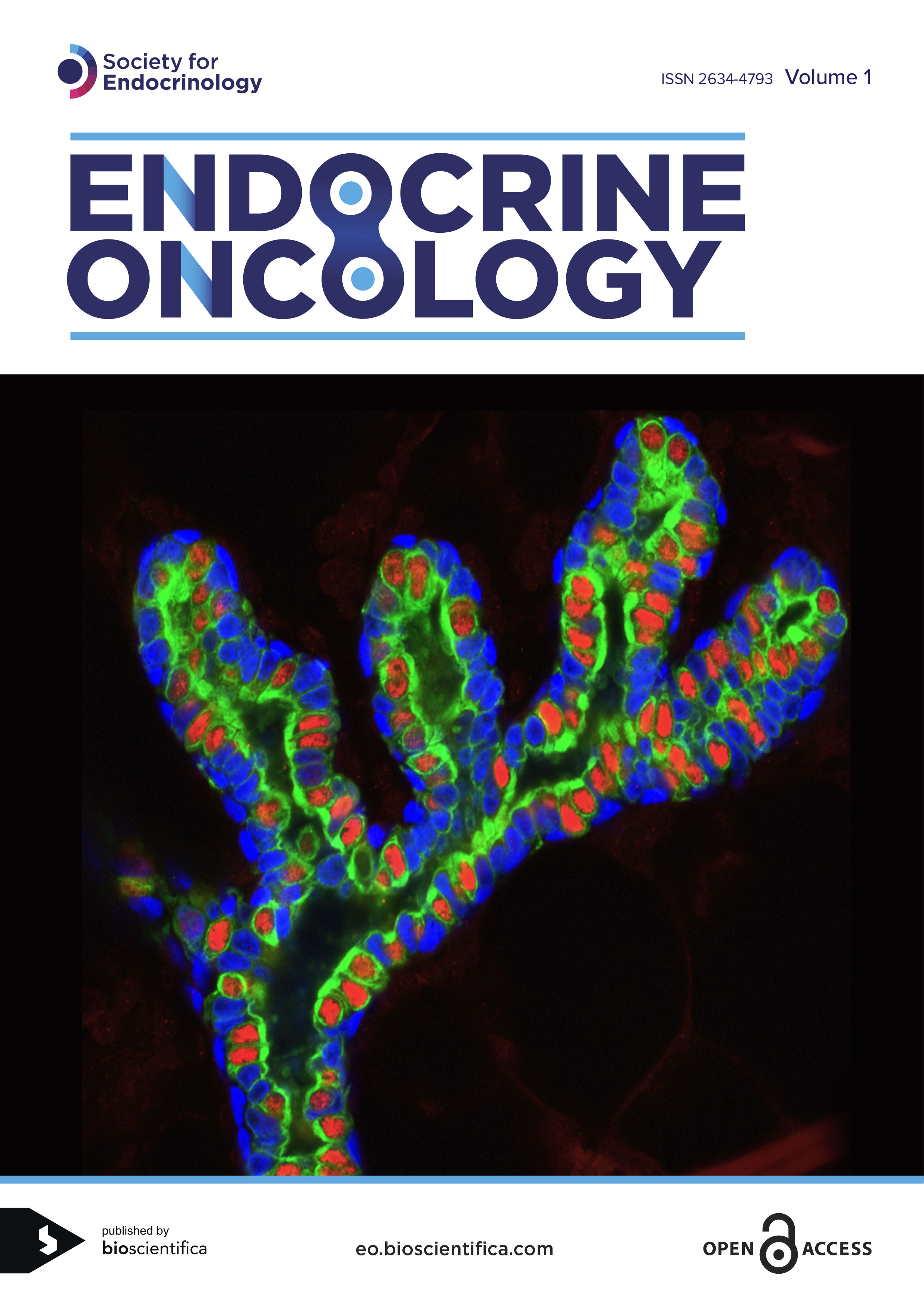Endocrine Oncology Cover Vol 1 Hires MH